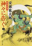表紙:戦国秘譚 神々に告ぐ(上)