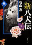 表紙:新八犬伝 承