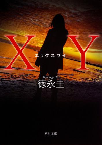書影:XY