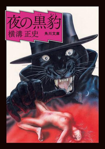 書影:夜の黒豹