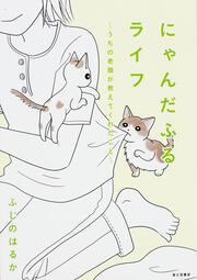 にゃんだふるライフ〜うちの老猫が教えてくれたこと〜