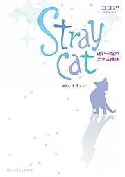 Stray cat迷い子猫のご主人様は